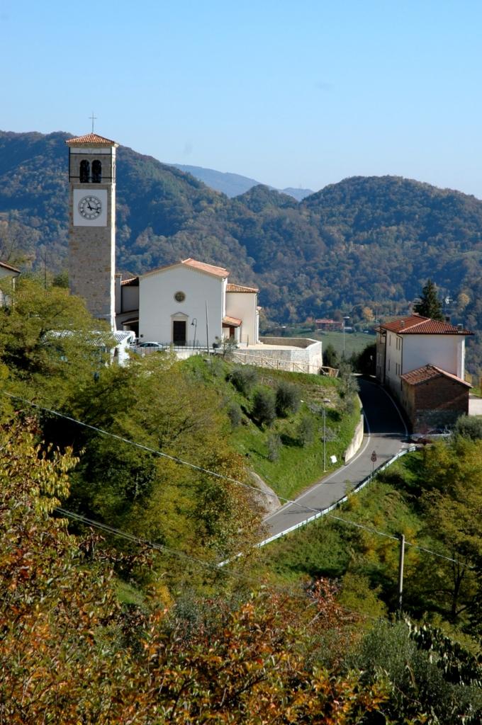 prosecco DOCG vineyards in Arfanta di Tarzo