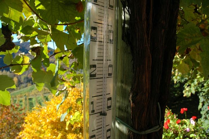 Near 20° Celsius: a mild autumn