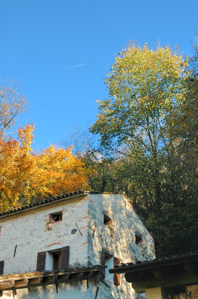 Autumn colors over the watermill